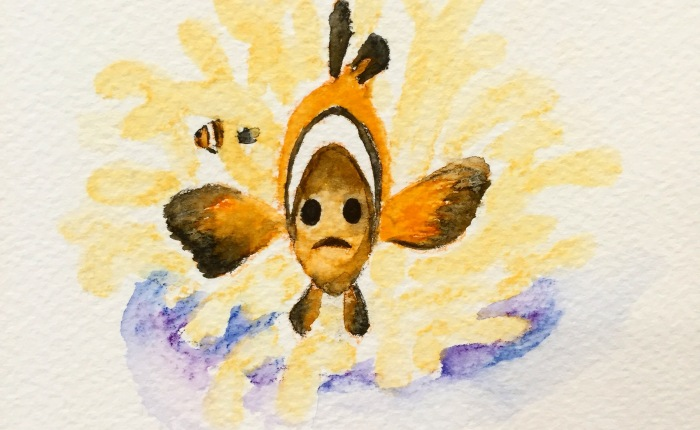 Clownfish home